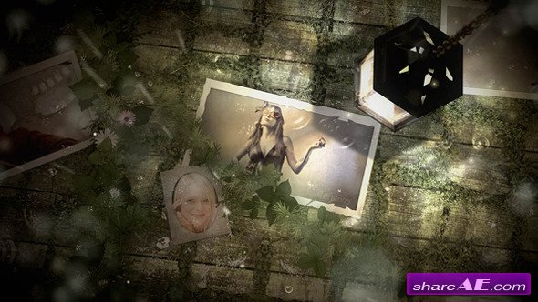 Light Photo Gallery - Project for After Effects (VideoHive)