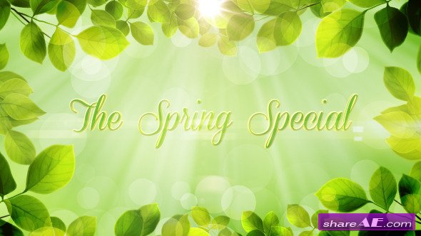 The Spring Special - Promo Pack - Project for After Effects (Videohive)