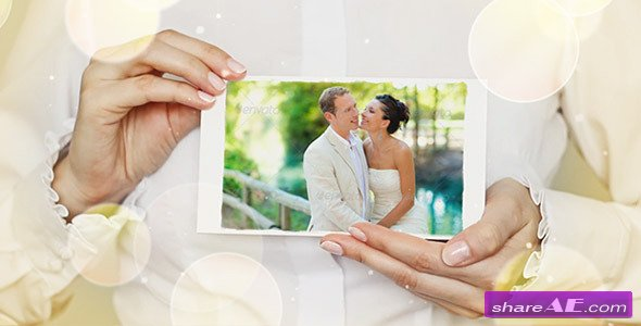 Beautiful Wedding Story Collection - Project for After Effects (Videohive)