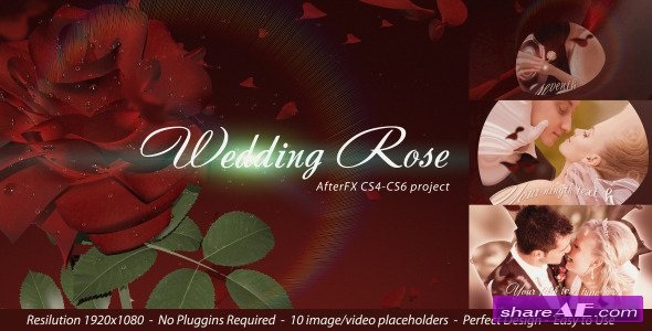 Wedding Rose - Project for After Effects (Videohive)