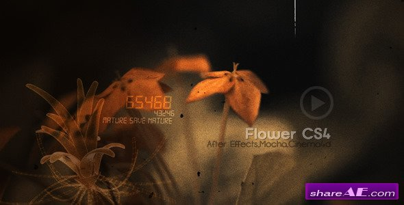 Flowers CS4 - After Effects Project (Videohive)