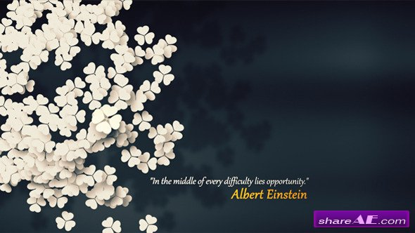 One Opportunity - After Effects Project (Videohive)