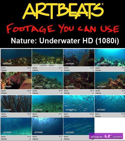 Artbeats - Nature: Underwater HD (1080i)