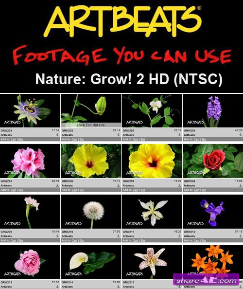 Artbeats - Nature: Grow! 2 HD (NTSC)