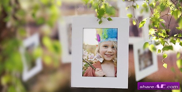 Photo Gallery on a Sunny Afternoon - Project for After Effects (Videohive)