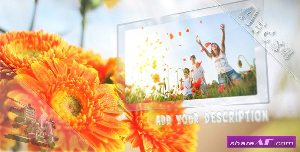 Sunny Flowers - After Effects Project (Videohive)