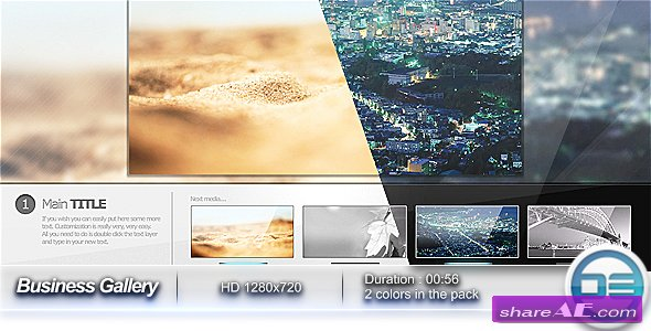 Business Gallery - After Effects Project (VideoHive)