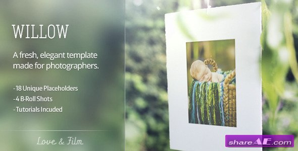 Willow - After Effects Project (Videohive)