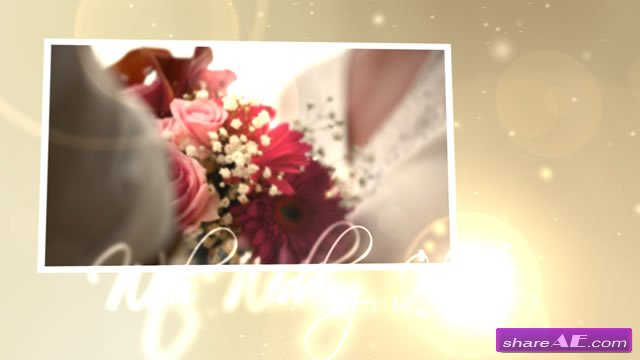 Wedding Hearts CS4 - After Effects Project (VideoHive)