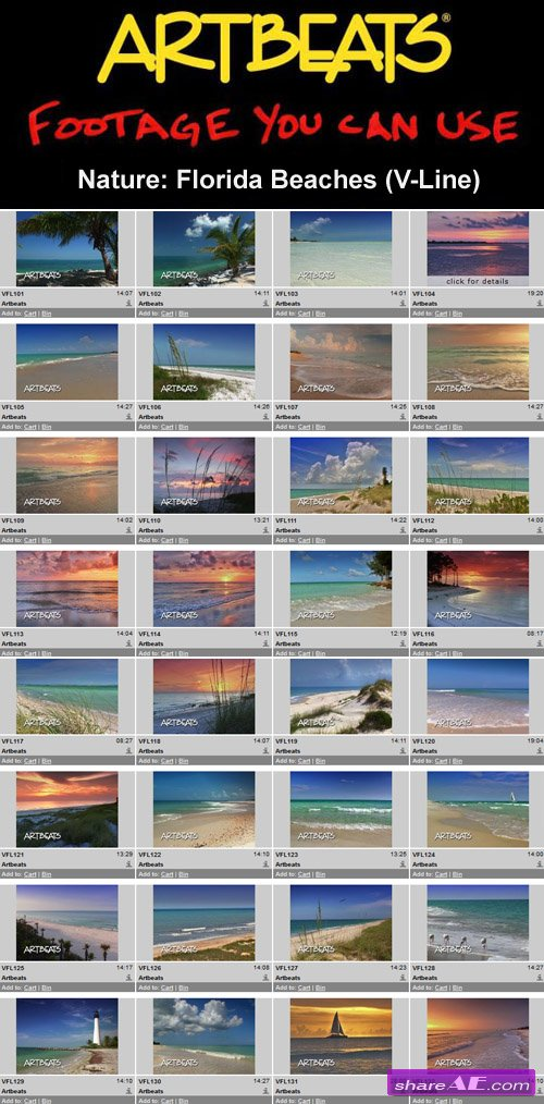 Artbeats - Nature: Florida Beaches (V-Line) (NTSC)