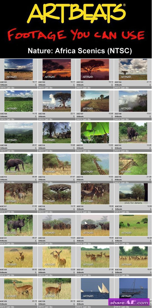 Artbeats - Nature: Africa Scenics (NTSC)
