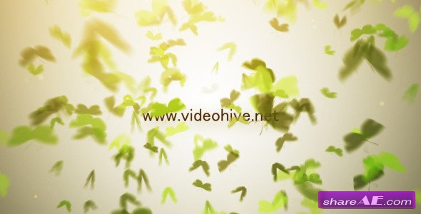 Butterfly Logo - After Effects Project (Videohive)