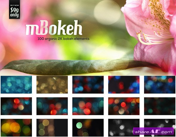 motionVFX - mBokeh - 100 Organic 2K Bokeh Elements - H264 Compressed