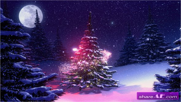 Winter Landscape With Christmas Tree Decorated - Stock Footage (iStock Video)