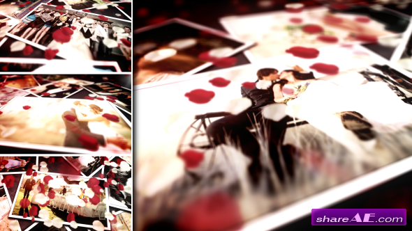 Floral Wedding Photos - After Effects Project (Videohive)