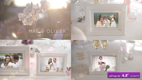 White Photo Gallery - Special Events - After Effects Project (Videohive)