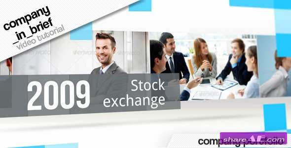 Company in Brief - After Effects Project (Videohive)