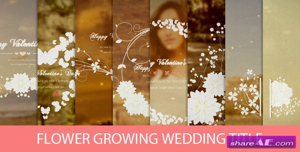 flower growing wedding title after effects project videohive