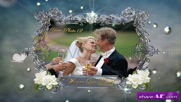 Our Elegant Wedding Montage