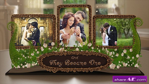Wedding Al Pop Up Book After Effects Project Videohive