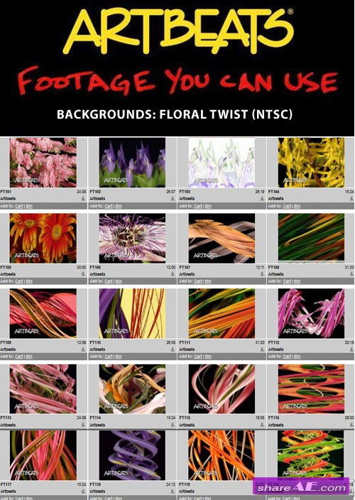 Artbeats - Backgrounds: Floral Twist (NTSC)
