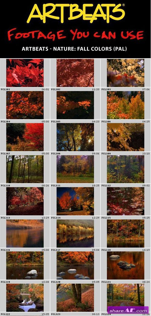Artbeats - Nature: Fall Colors (PAL)
