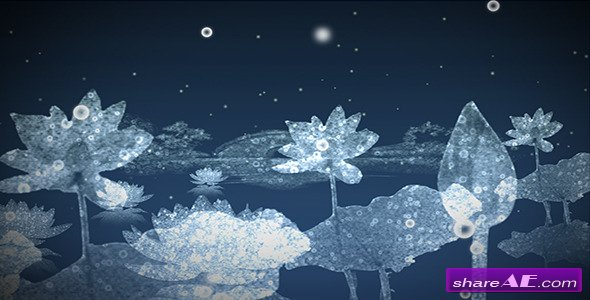 Water Flowers - Motion Graphic (Videohive)