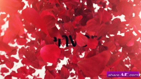 Petals Logo Reveal II - After Effects Project (Videohive)