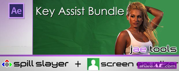 Key Assist Bundle v1.0 (Spill Slayer + Screen Equalizer)