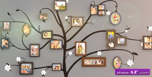 Videohive Family Tree Wall Gallery - After Effects Project