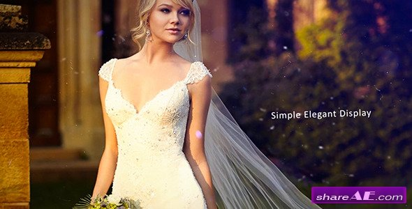 Videohive Wedding Photos