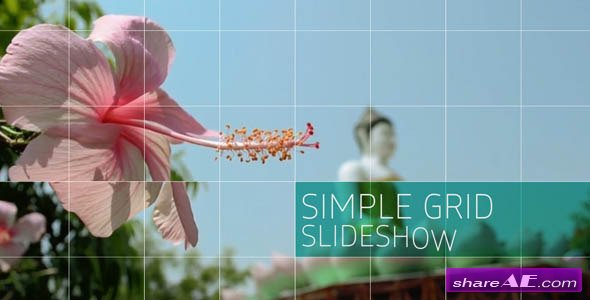 Simple Grid Slideshow - Videohive