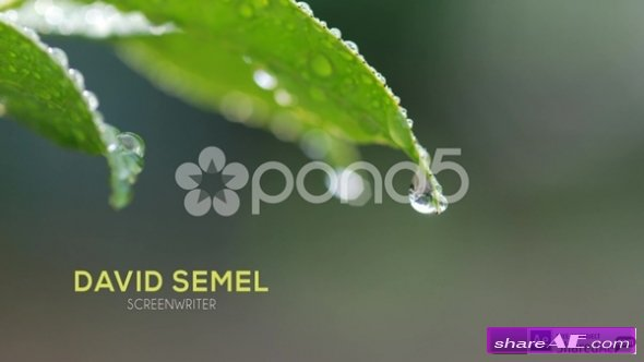 Simple Lower Third - After Effects Templates (Pond5)