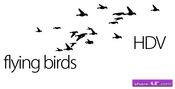 Flying Birds - Motion Graphic (Videohive)