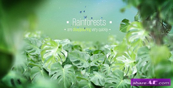 Videohive The Rainforests Titles