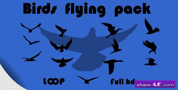 Birds Flying Pack - Motion Graphic (Videohive)