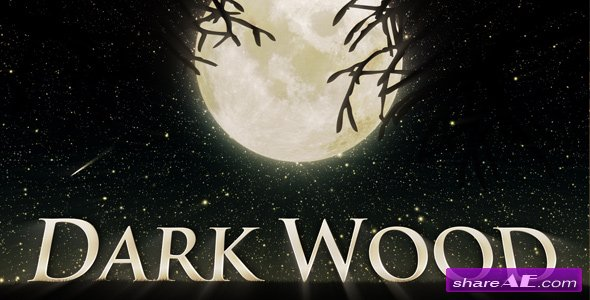 Videohive Dark Wood