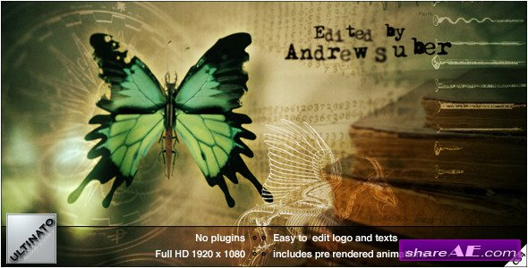 Videohive Paranormal