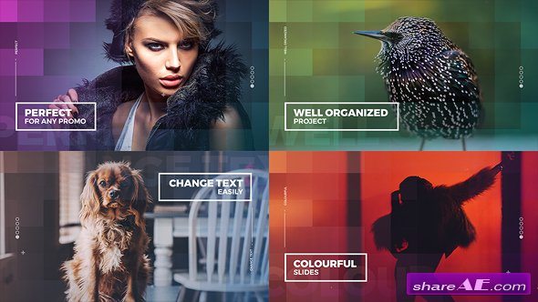 Videohive Colourful Slides