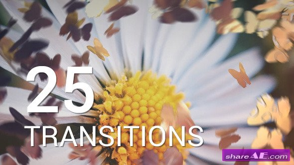 Videohive Butterflies Transitions