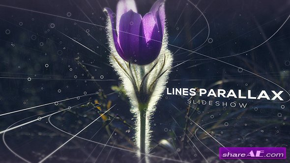 Videohive Lines Parallax Slideshow
