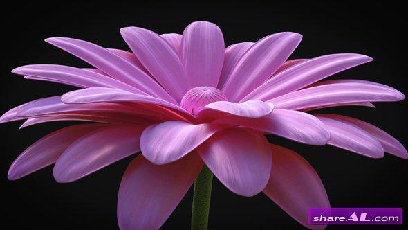 Videohive Flower - Elegant Logo Reveal