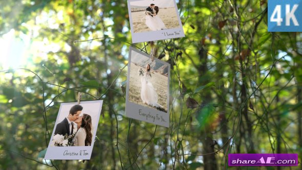 Videohive Photo Memories on Trees