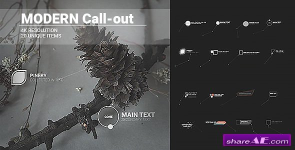 Videohive Modern Call-outs