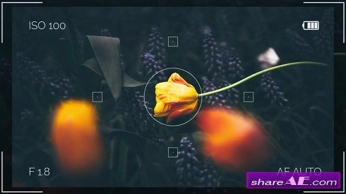 Summer Travel Camera Memories - After Effects Template (Motion Array)