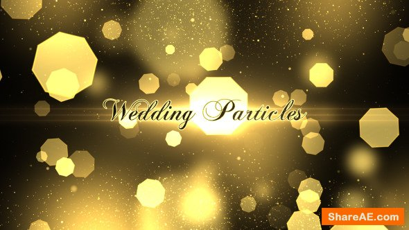 Videohive Wedding Particles Opener