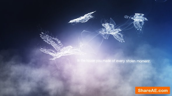Videohive Concept of Freedom