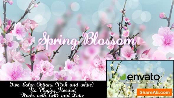 Videohive Spring Blossom