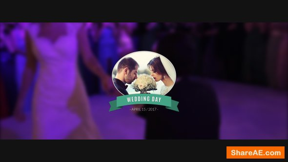 Videohive 15 Wedding Titles