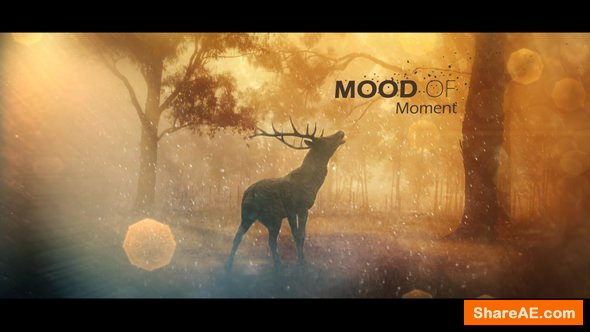 Videohive Mood Of Moments Parallax Opener